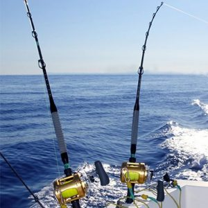 Pesca Colectiva